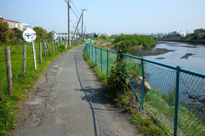 Rivière et chemin