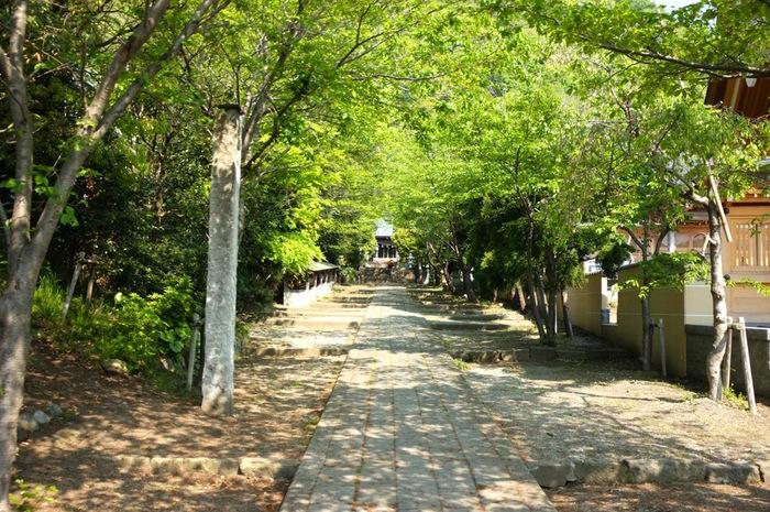 Chemin de sanctuaire