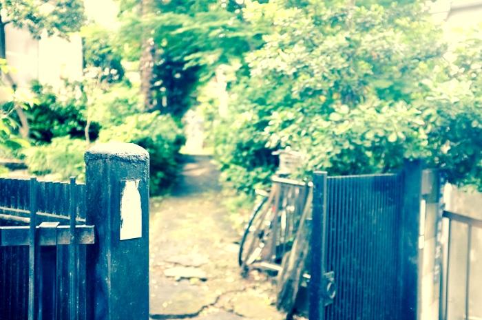 porte ouverte et chemin verdoyant
