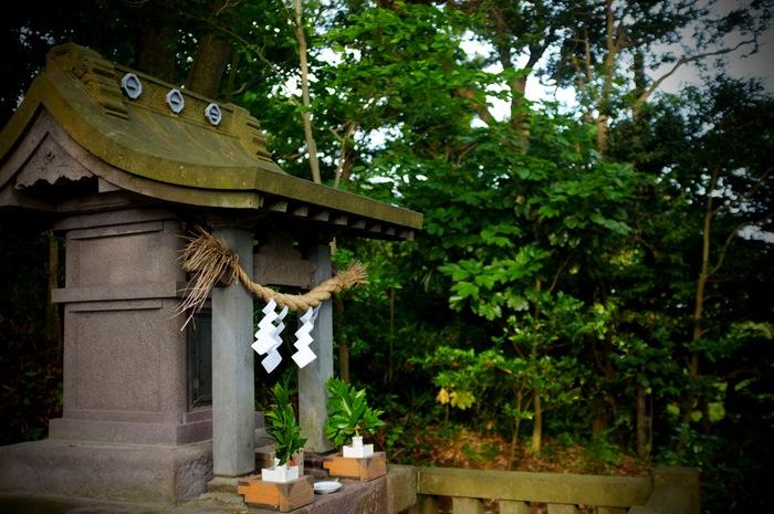 sanctuaire dans la forêt