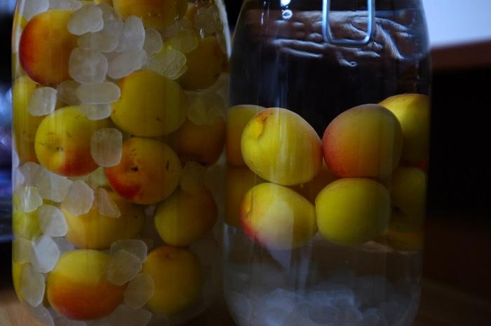 deux pots en verre avec des prunes