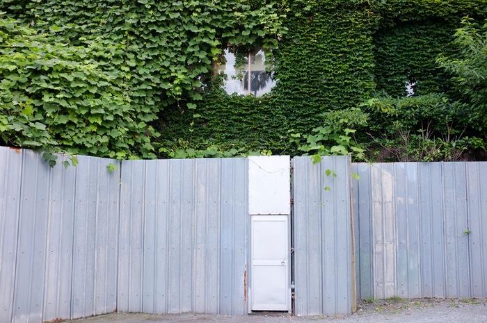 Maison abandonnée couverte de lierre