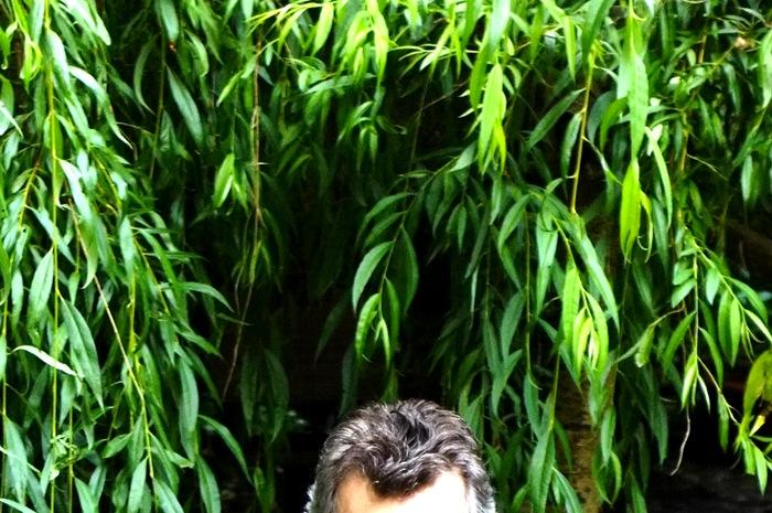 Feuillage d'arbre et cheveux