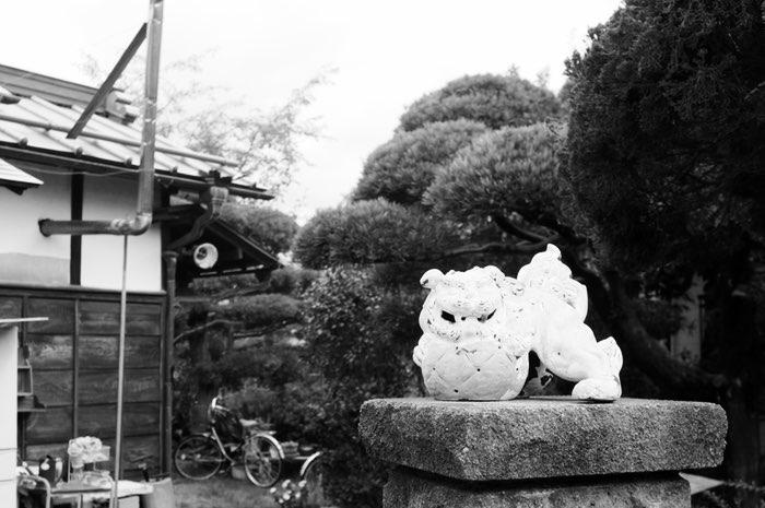 Statue de lion à l'entrée d'une maison