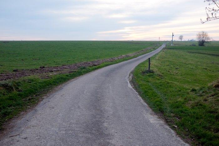 Route fuyant sur l'horizon entre les champs