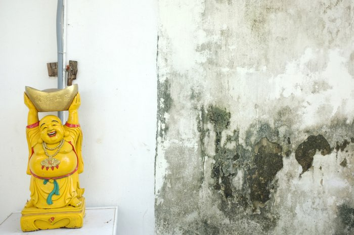 Bouddha et mur humide