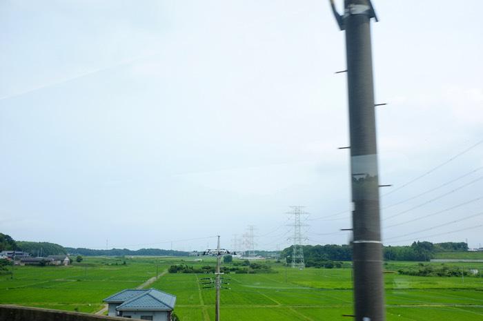 Rizière près de Narita