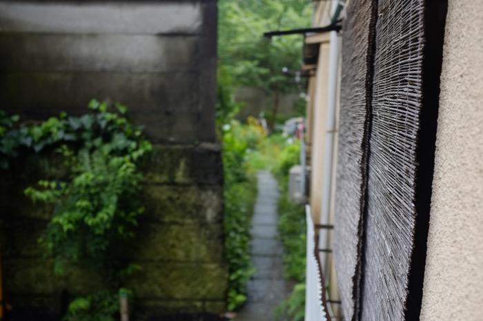 chemin et végétation près d'une maison
