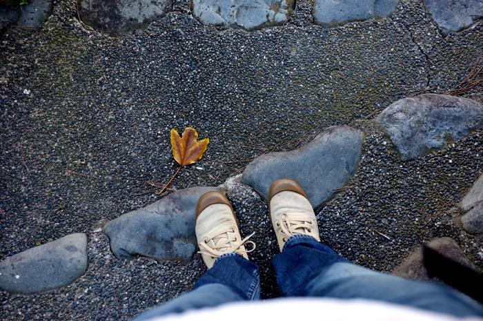 pieds et feuille morte