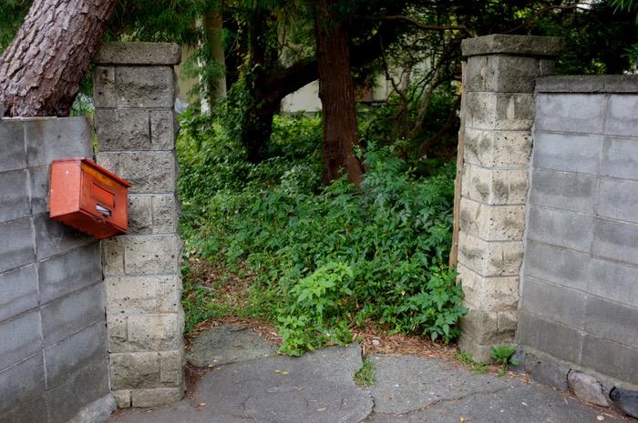 portail d'entrée et végétation