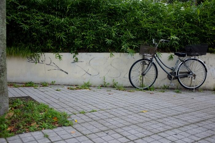 Vélo et végétation