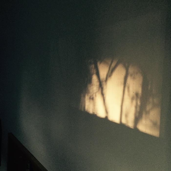 ombre sur le mur