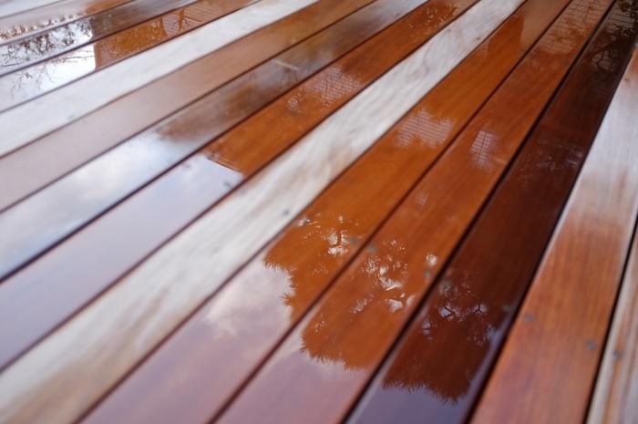 réflexion d'un pin dans la terrasse.