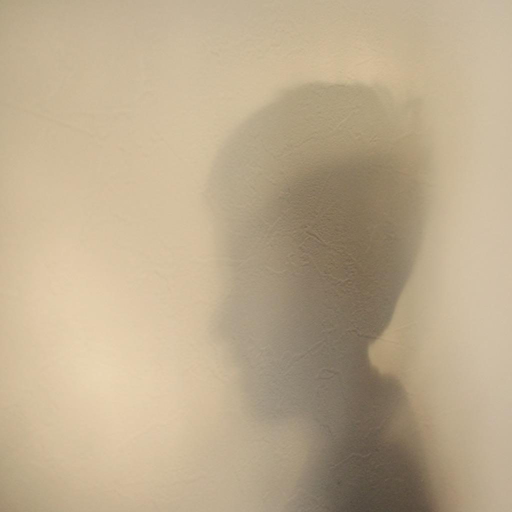 L'ombre de son portrait