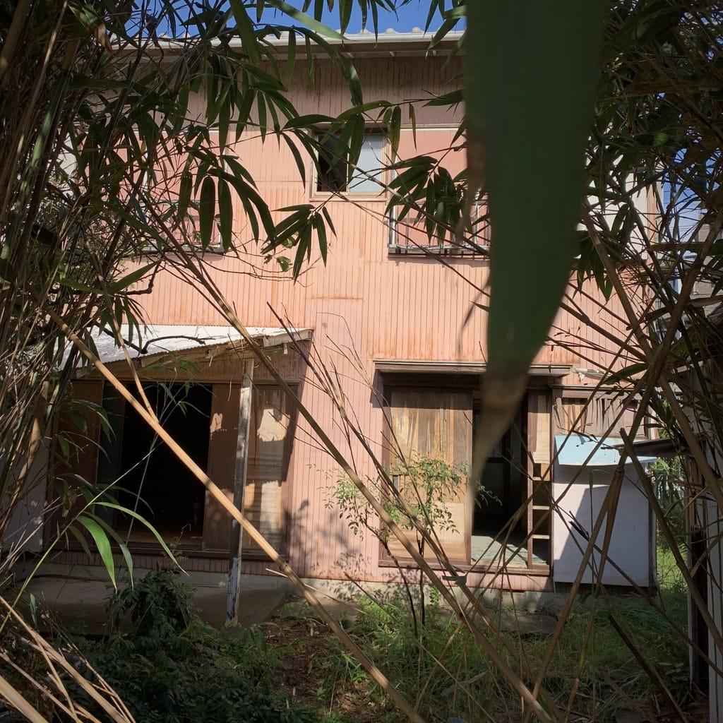 Maison entourée de bambous