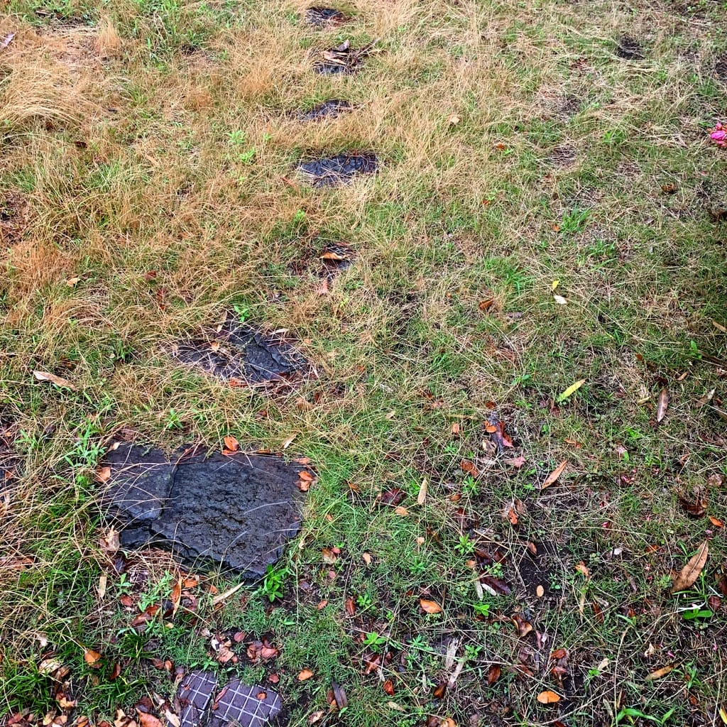 pierres plates de chemin