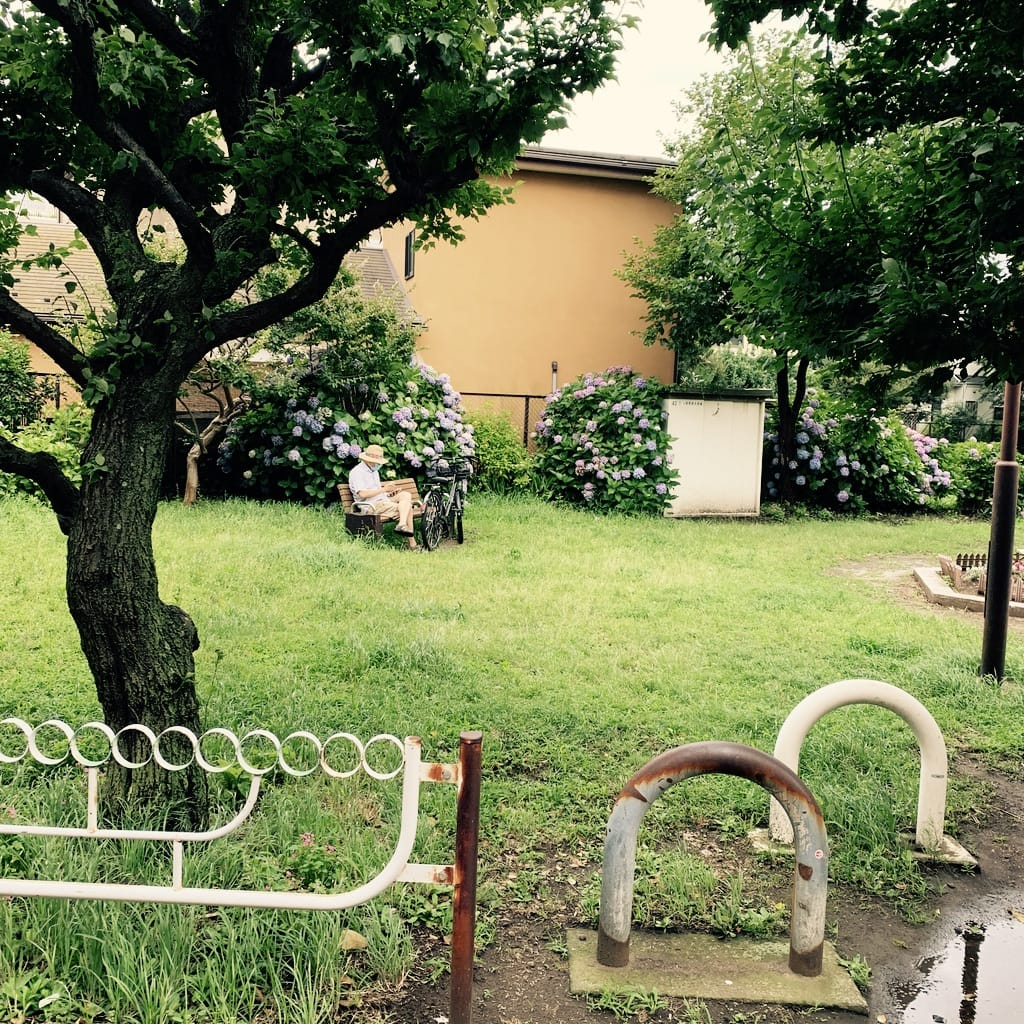 homme sur un banc dans un parc