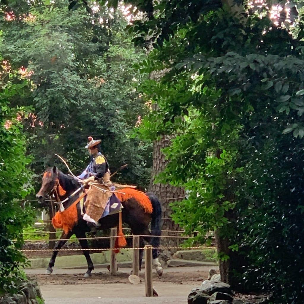 Archer sur un cheval au pas