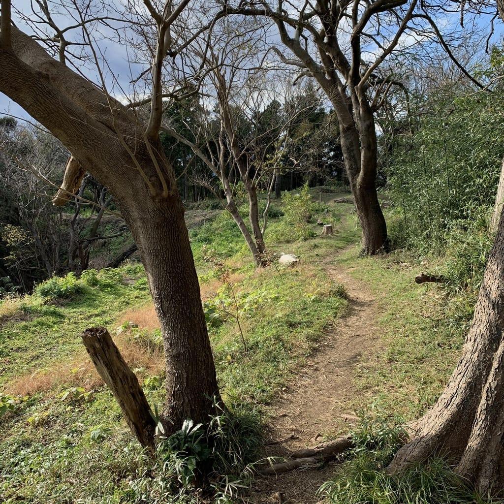 Chemin sur le haut des collines