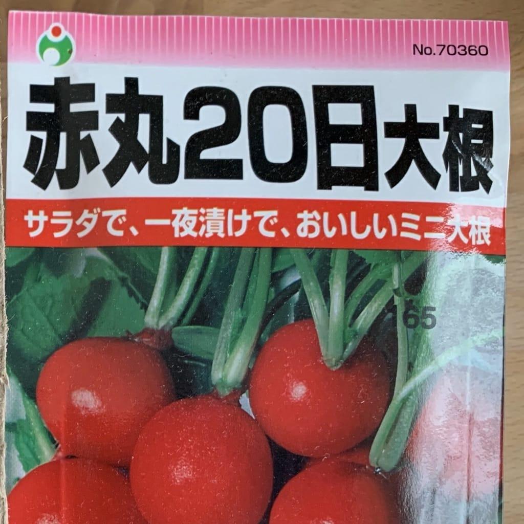 sachet de graines de radis