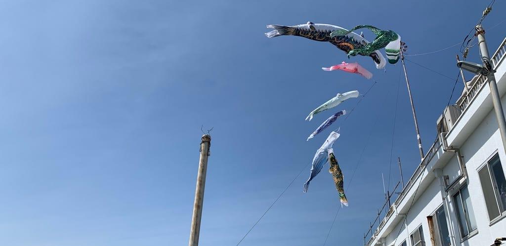 Manche à air avec poissons