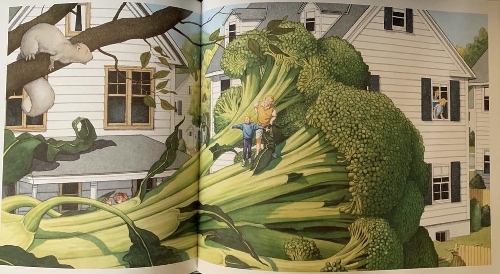 Brocoli géant dans un jardin