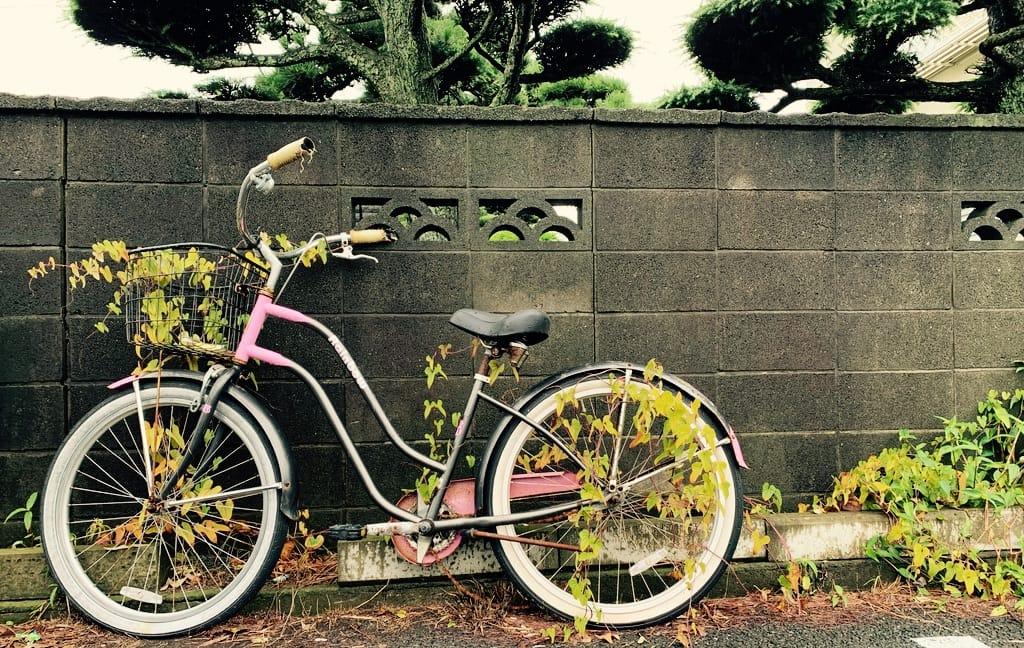 Vélo enveloppé par des plantes.