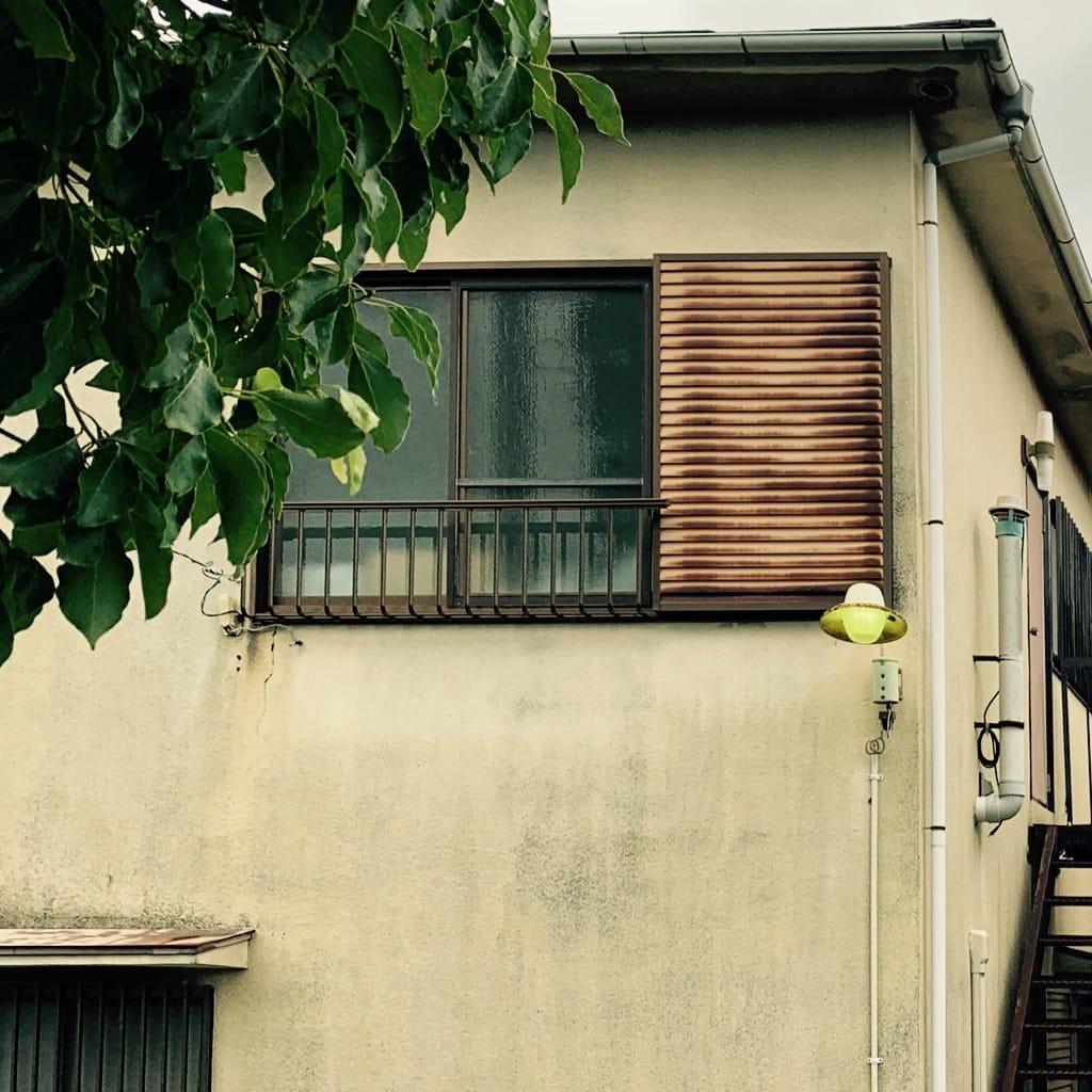 fenêtre, lampe et végétation.