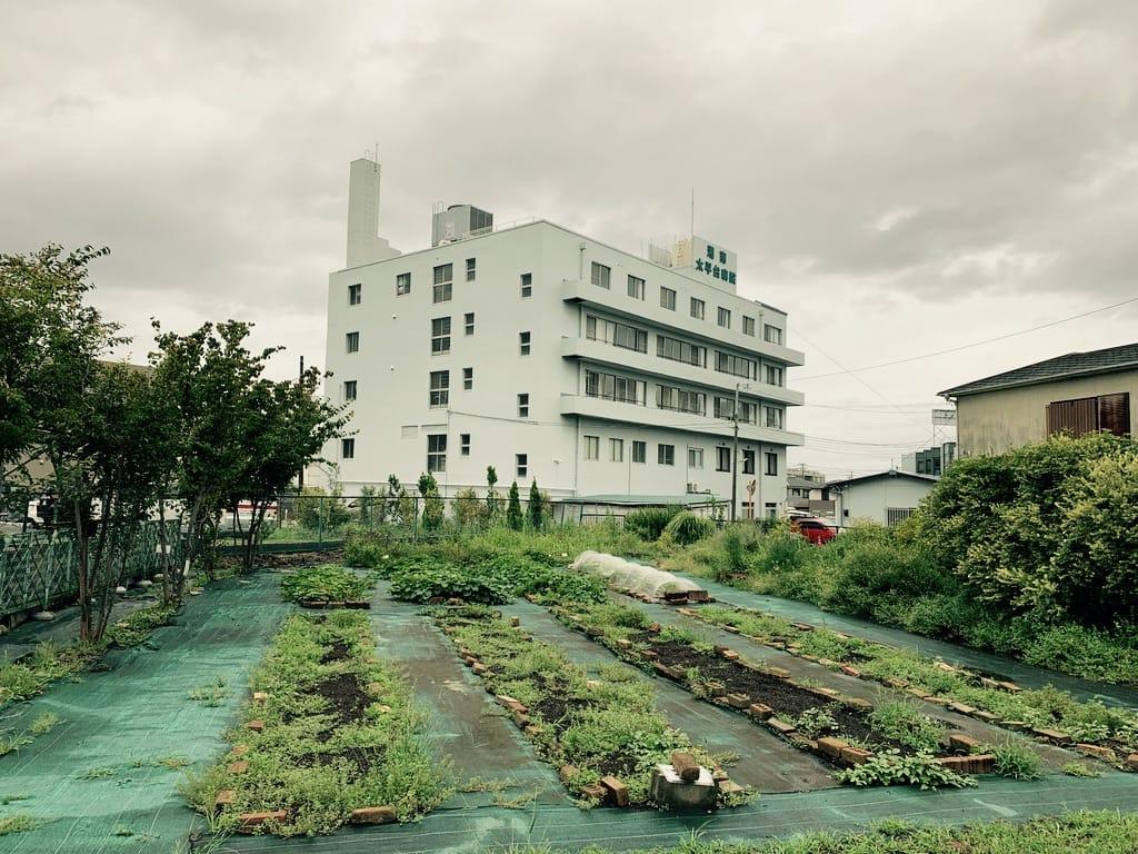 jardins en face d'un hôpital.