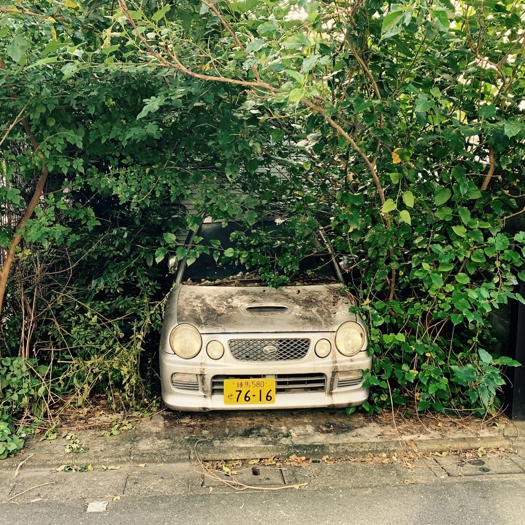 voiture abandonnée dans les feuillages.
